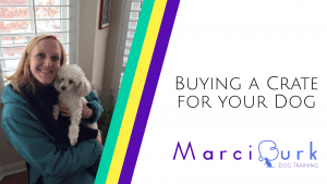 Buying a Crate for your Dog - Blog Image - Marci Burk Dog Training